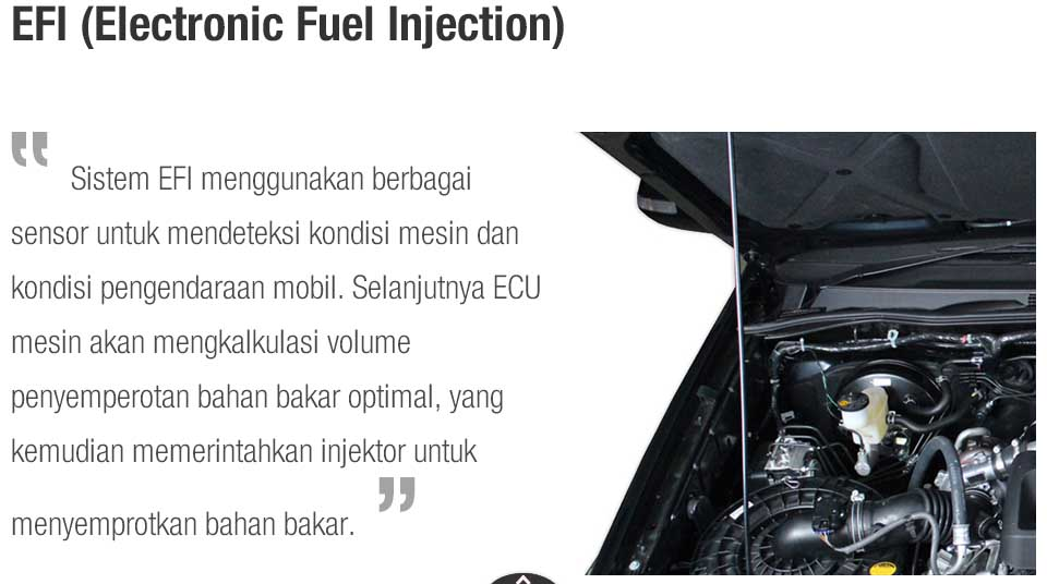 EFI (Electronic Fuel Injection)